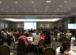 Delegates at the Pushing Boundaries in Brain Injury Conference