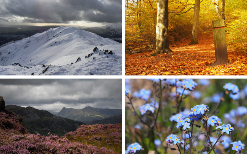 The changing seasons